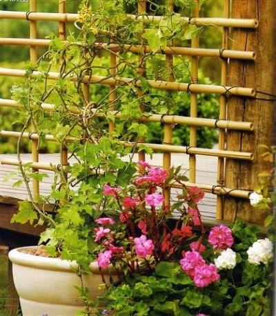 Como fazer Cerca de Bambu (Foto: Divulgação).