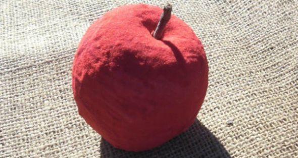 Esta fruta para decoração é muito fácil de ser feita e deixará a sua cozinha muito mais especial (Foto: Divulgação)