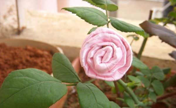 Esta rosa de fita fácil pode decorar o que você quiser (Foto: cardsandschoolprojects.blogspot.com.br)