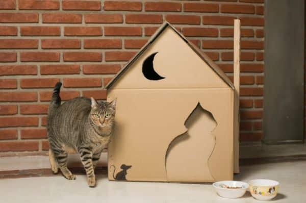 Esta casinha para o gato vai deixar os dias de seu felino muito mais confortáveis e a sua casa muito mais bonita, pois esta é também uma bela peça de decoração (Foto: mulher.uol.com.br)