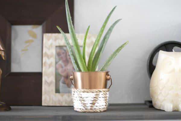 Decoração com minibalde é delicada, linda e barata (Foto: kristimurphy.com)
