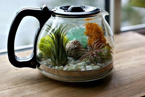 Terrário de suculentas é lindo e delicado (Foto: acharmingproject.com)