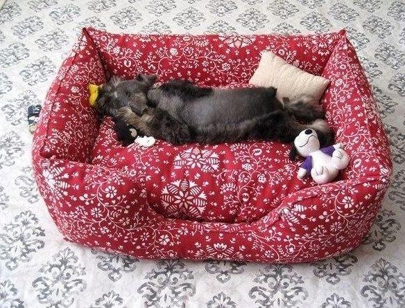 Sofá para cachorro é lindo e seu animalzinho de estimação vai amar (Foto: lovethispic.com)
