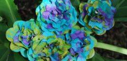 Flores coloridas de jornal são lindas e baratas (Foto: craftingmom.com)