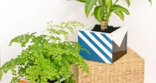 Como Fazer Cachepot para Plantas de Madeira