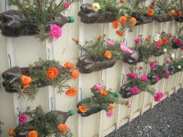 Excepcional Aprenda como Fazer Horta em Garrafa Pet 13 - Como fazer artesanatos WN47