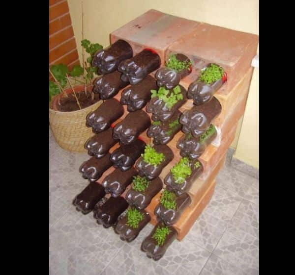horta com garrafa pet e bloco