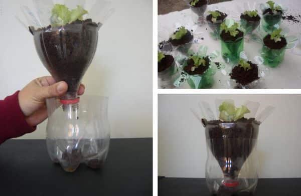 vaso com garrafa pet