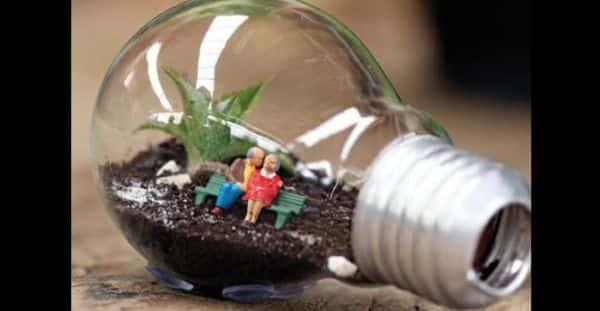 terrario na lampada como fazer