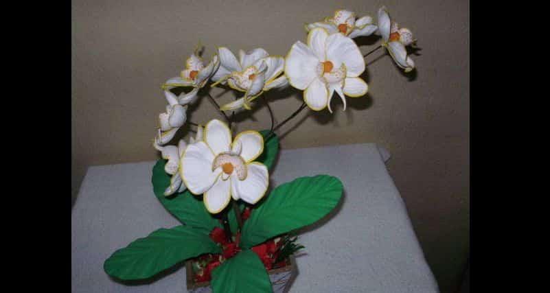 tutorial flor de eva