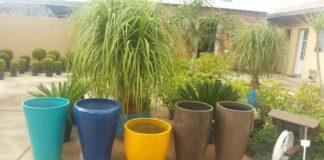 vaso de cimento coloridos