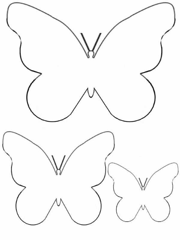 3d borboleta molde