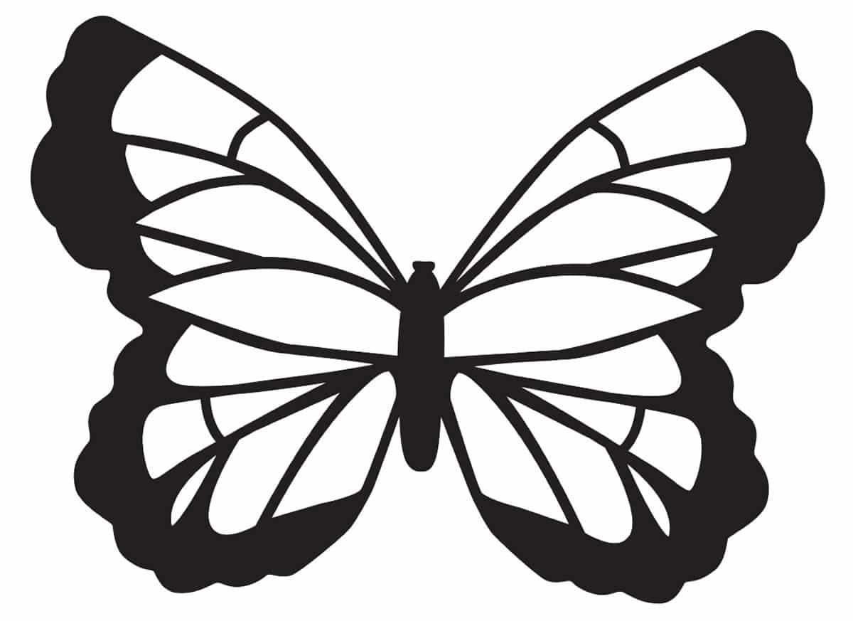 borboleta molde vazada