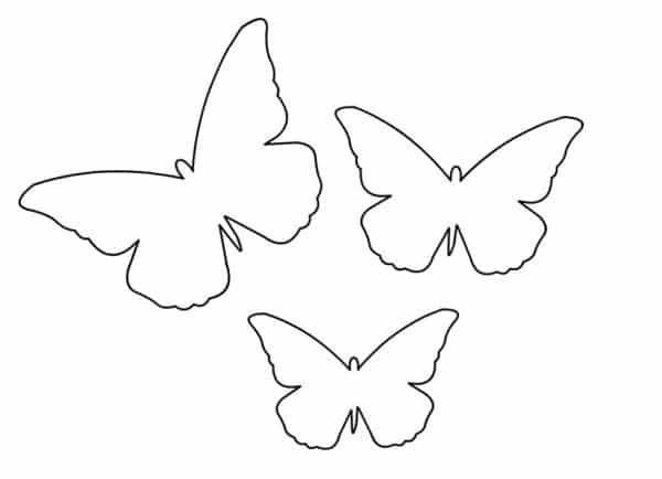 borboleta molde
