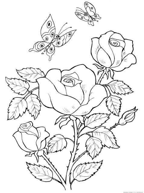 moldes de rosas