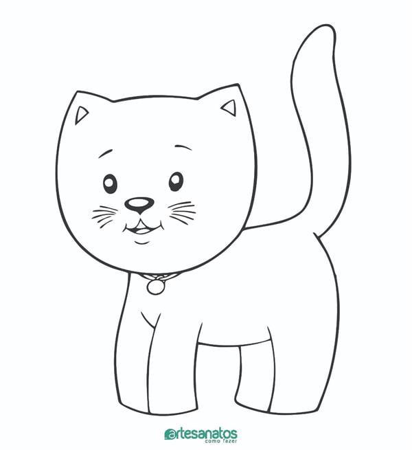 gato com coleira