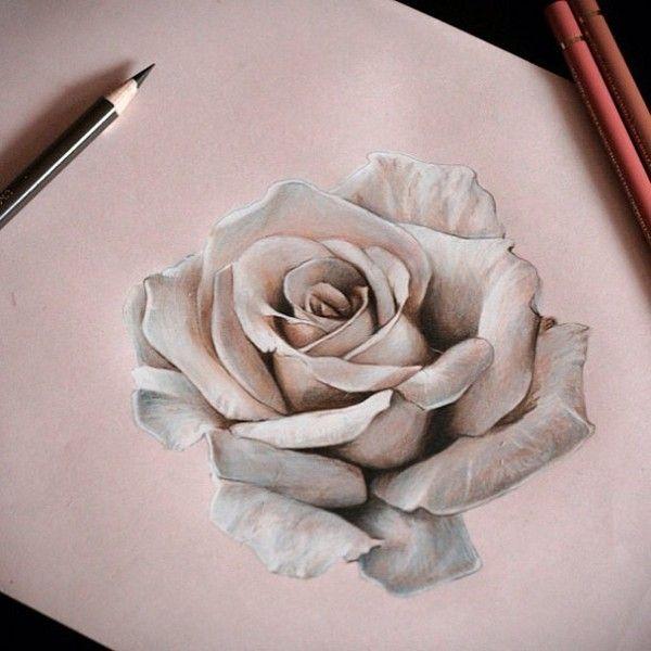 desenhos de rosas para desenhar