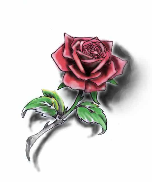 desenhos de rosas coloridas