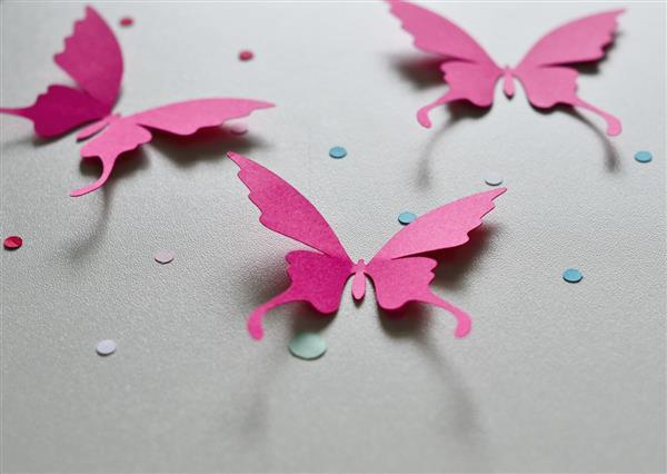 borboletas simples