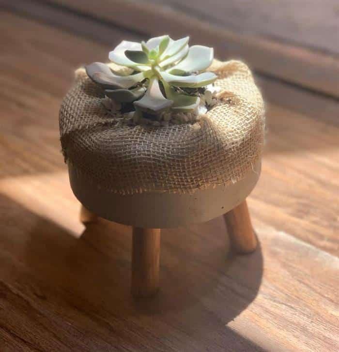 vaso decorativo para suculentas