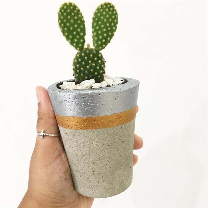 vasos de cimento altos